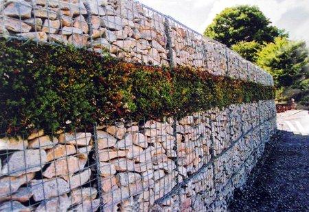 Заборы, ограды